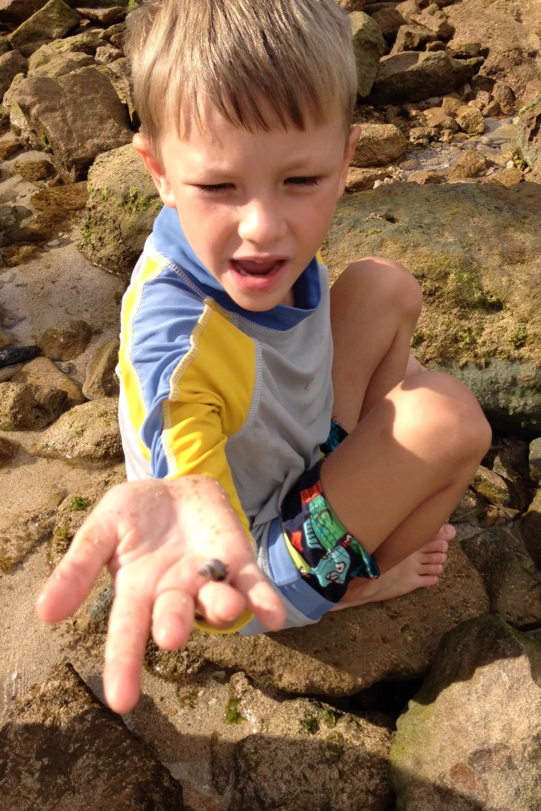 B crabbing