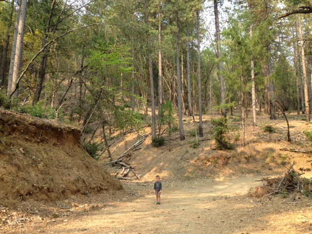 Hike 2 bad mood